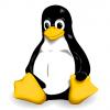 Linuxでフォルダ同期(バックアップ)する方法